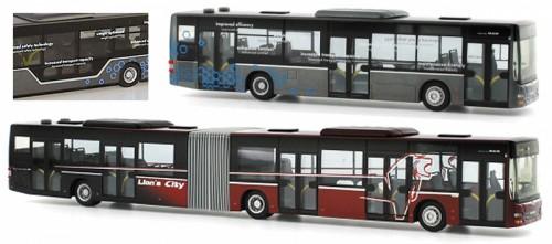 Z-Bussen 02